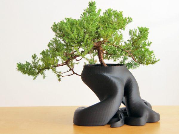 Karaïb 3D Karaïbe Karaïbes Caraïbes Caraïbe Impression conception fabrication numérique imprimante Pot pour bonsaï