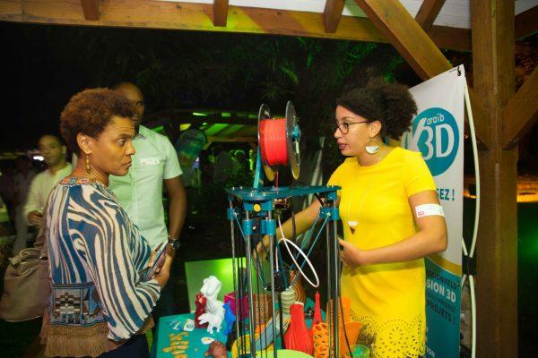 Karaïb 3D Karaïbe Karaïbes Caraïbes Caraïbe Impression conception fabrication numérique imprimante Apéro Madinmag du 17 Mai 2018 au Château la Favorite